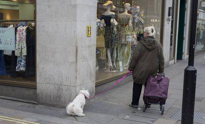 Un perro orina en la esquina de una calle, en una imagen de archivo.