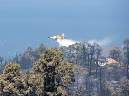 Un hidroavión hace una descarga este domingo para refrescar una zona quemada en el barrio de El Castillo del municipio de Garafía, en la isla de La Palma.