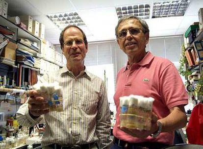 Los biólogos Peter Lawrence y Ginés Morata, ganadores del Premio Príncipe de Asturias de Investigación Científica y Técnica en 2007.