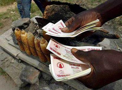 Un hombre maneja fajos de billetes de 10 millones de dólares zimbabuenses en su puesto de venta de maíz en Harare.