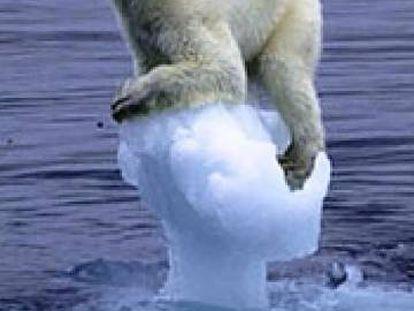 "<b>ONG WWF.</b> ""¿Te parece gracioso? Paremos el cambio climático"". Agencia desconocida."