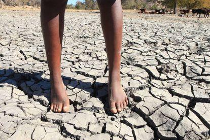 El aumento de las temperaturas medias puede traducirse para la infancia en un incremento de enfermedades transmitidas por vectores, como malaria o diarrea.
