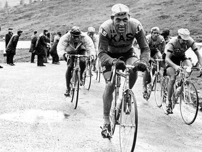 Antonio Gómez del Moral, con el maillot del Kas, en el Giro de 1967.