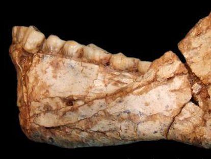 El yacimiento de Jebel Irhoud, de 300.000 años, desplaza la cuna de la humanidad al norte de África