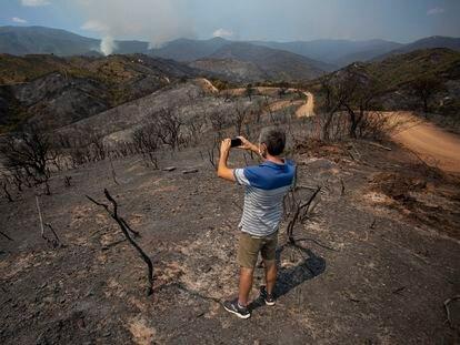 Vista general de la zona quemada en el incendio de Sierra Bermeja, que afecta a la localidad de Estepona y que ha obligado a desalojar a más de mil vecinos.