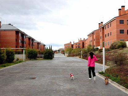 Laura Hernández, vecina de Majadahonda (Madrid) y beneficiada con uno de los pisos afectados por la nulidad, pasea a sus dos perros.