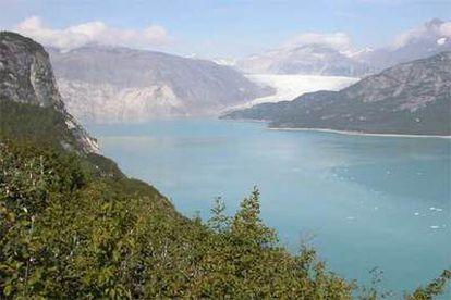 El mismo lugar, el 31 de agosto de 2004. Entre una imagen y otra ha perdido 12 kilómetros de hielo y 800 metros de espesor. Ahora hay vegetación.