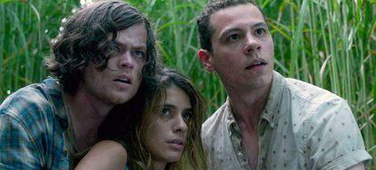 'En la hierba alta': Travis (izquierda), el novio de Becky (centro), se sacrifica y viaja al pasado para evitar que Becky y su hermano se adentren en el campo de hierba que acaba con todo aquel que lo visita.