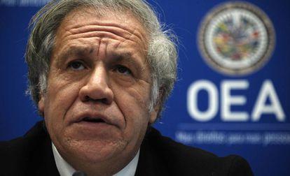 Almagro niega que la estrategia de la OEA fuera sacar a Maduro del poder  este año | Internacional | EL PAÍS