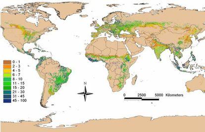 El mapa muestra el porcentaje de árboles en los terrenos cultivados en todo el mundo.
