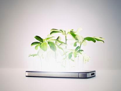 Naturaleza creciendo de un 'smartphone' (teléfono inteligente)