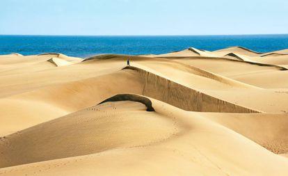 Las dunas de Maspalomas, una reserva natural de unas 400 hectáreas situada en el municipio de San Bartolomé (Las Palmas).