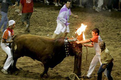 Celebración de bou embolat en la Plana Baixa de Castellón.