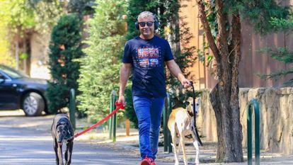 El presentador Jorge Javier Vazquez paseando por Madrid a dos de sus galgos.