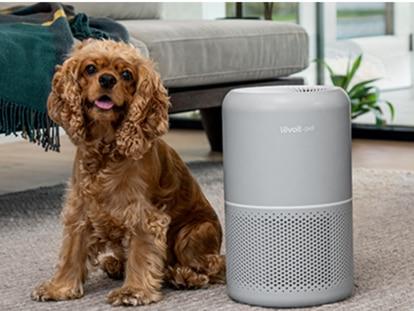 Elimina hasta el 99.97% de los alérgenos con este purificador de aire portátil.