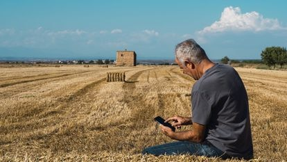 Senior farmer sitting on straw bale looking at mobile phone in field. Agriculture concept.
