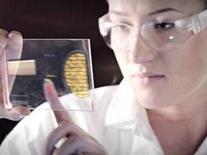 Una científica analiza la estructura del ADN.