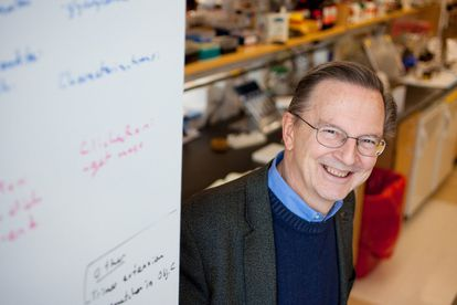 El investigador estadounidense Jack Szostak, ganador de un Nobel de Medicina.