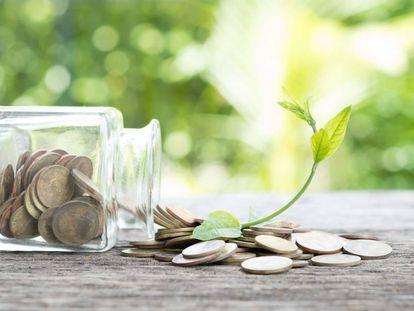 ¿Cómo será la recuperación económica?