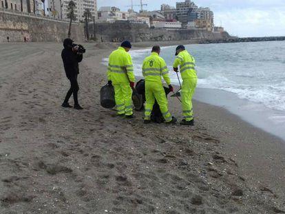 Trabajadores retiran medusas peligrosas de la playa de  Ceuta el pasado 15 de abril.