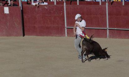 Un momento de la becerrada de Valmojado (Toledo), tomado del vídeo difundido por PACMA.