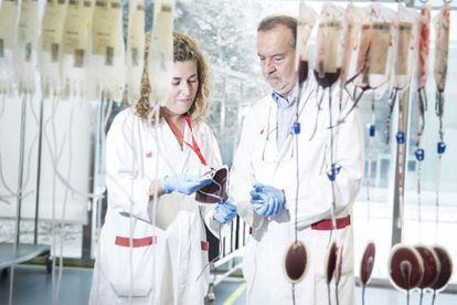 El hematólogo Eduardo Muñiz, experto en grupos sanguíneos raros, con una colaboradora en el Banco de Sangre de Cataluña.