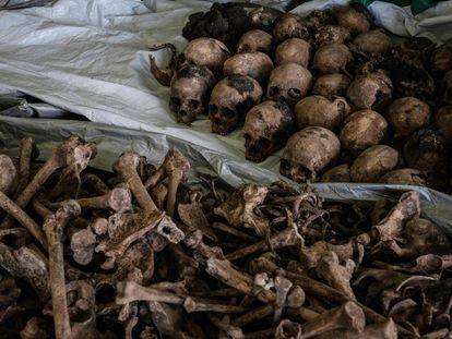 Huesos y calaveras de víctimas del genocidio de Ruanda descubiertas en una nueva fosa en 2018.