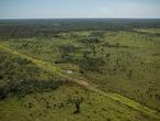 La reserva de la biosfera del Parque Nacional del Tigre, en Petén, deforestada y convertida en corredor habitual para organizaciones de narcotraficantes.