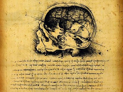 Arriba, fragmento de los apuntes de anatomía de Leonardo da Vinci.