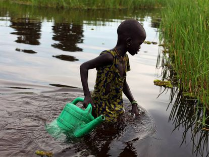 Una chica desplazada interna recoge agua en Sudd Swamp (Sudán del Sur).