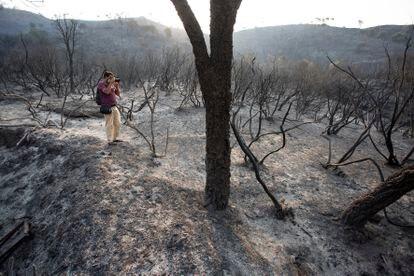 Zona quemada en el incendio forestal en la Sierra Bermeja, este viernes.
