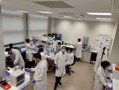Equipo del investigador Miguel Holgado en el laboratorio de la Universidad Politécnica de Madrid.